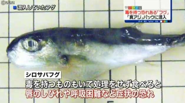 アジのパックに毒を持つ恐れがあるフグ混入 横浜市や大分市のスーパーで