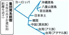 現代沖縄人DNAの遺伝系統「日本本土に近い」 -  琉球新報 - 沖縄の新聞、地域のニュース