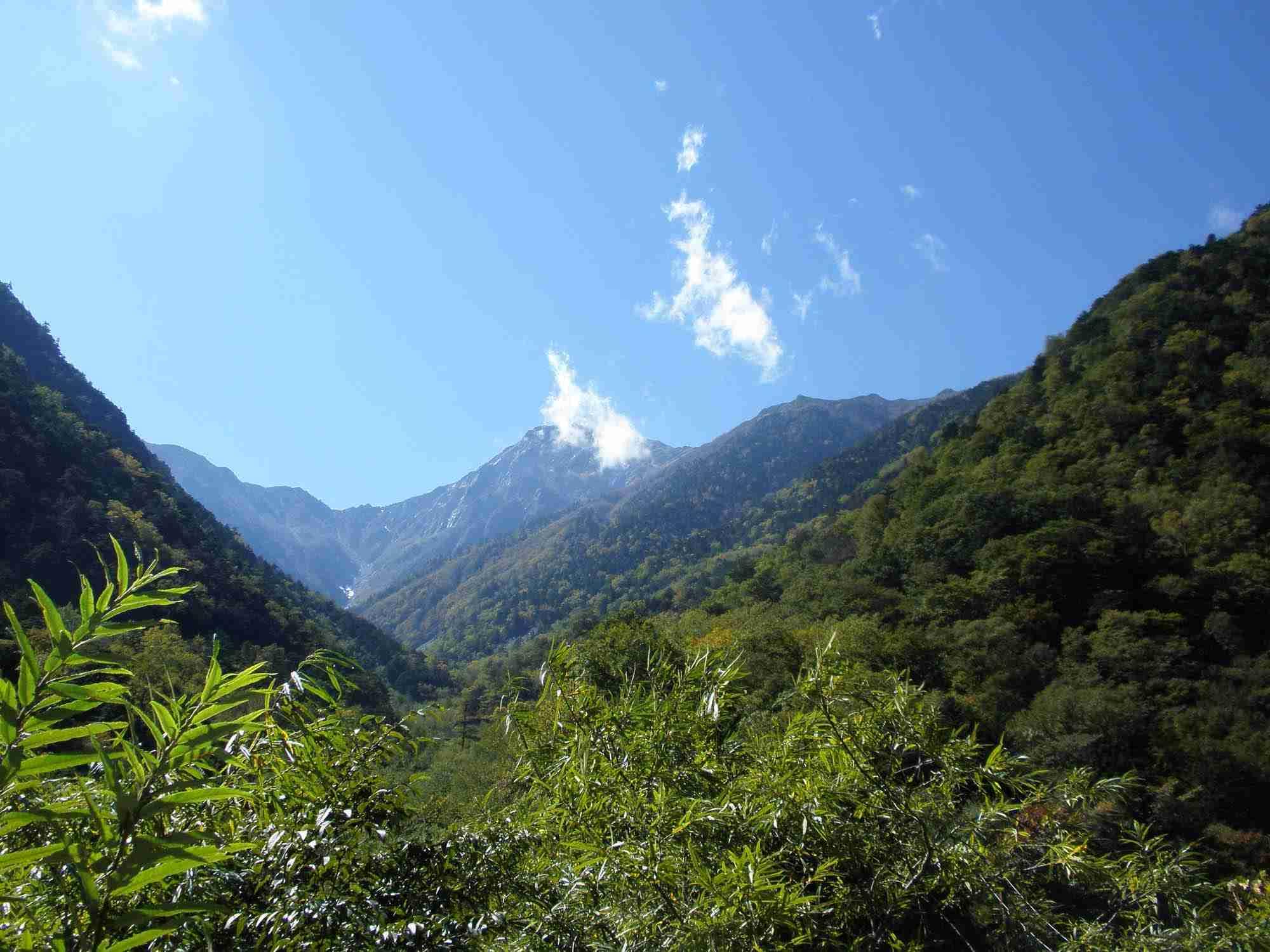 愛知県の山中に大量の「証拠品」…警察官が意図的に投棄か?