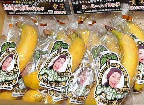 秋元才加がAKB48卒業セレモニーで見せたゴリラ衣装と差し入れバナナの深い理由が泣ける件