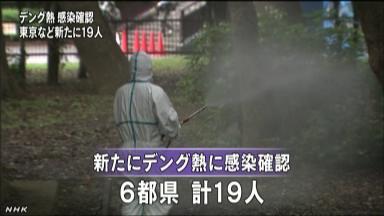 デング熱、新たに6都県19人の感染確認