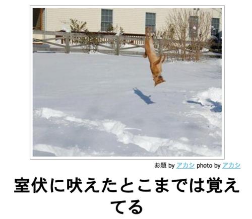 室伏広治とTBS高畑百合子アナに交際報道、週刊文春が「結婚情報」と伝える