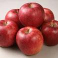 好きな果物のトピ\(^O^)/