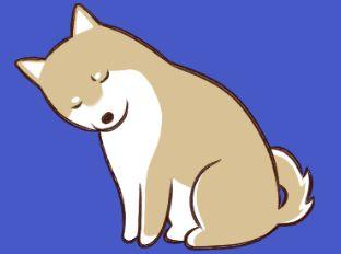 白ポメ高圧漫画 | 第50話 ゲインロス効果 | 鈴木さじ - comico