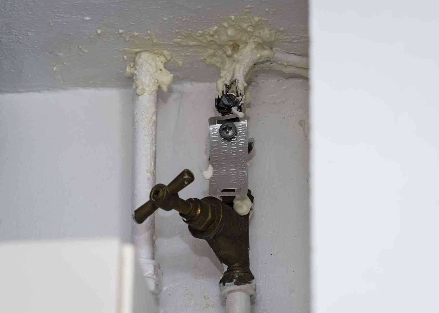 【閲覧注意】天井からウジ虫が降ってくるから上階を調べた結果…