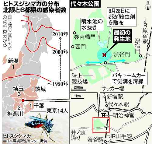 デング熱、複数の蚊が媒介か TBSロケでも感染の疑い:朝日新聞デジタル