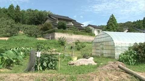 「1歳の娘の首を絞めた殺人未遂容疑で母親逮捕、娘は死亡」 News i - TBSの動画ニュースサイト