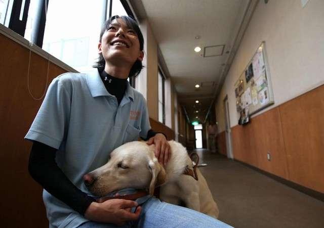 <刺傷事件>「盲導犬を正しく理解して」使用者団体が声明を発表した背景とは? - ライブドアニュース