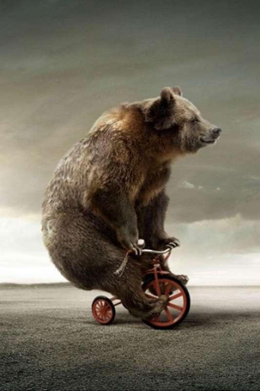 マツコ・デラックス、「自転車には一生乗らない!」 心に大きな傷を負った盗難事件。