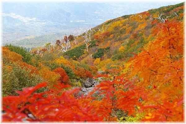 【御嶽山噴火】死者、計48人に 雲仙普賢岳上回り戦後最悪に