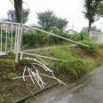 埼玉の衝突事故で女子高生死亡 4人重軽傷「酒飲んだ」