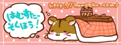 猫の成長過程が分かる画像:ハムスター速報