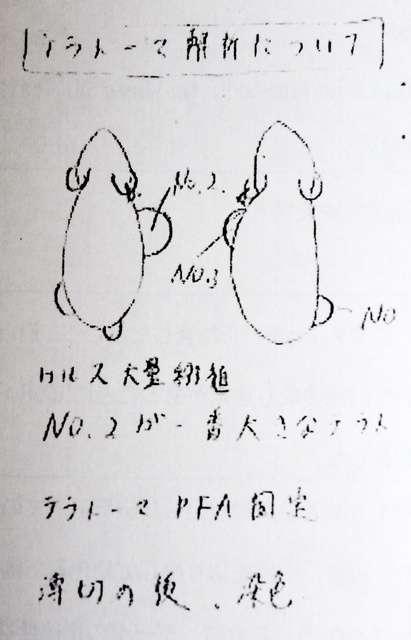 【STAP細胞】理研、小保方晴子氏の検証結果を19日に発表 本人は「心身の状態悪い」と欠席