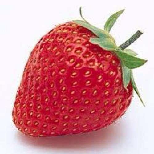 名前に「イチゴ」認めず フランスの裁判所、からかいの対象となると判断