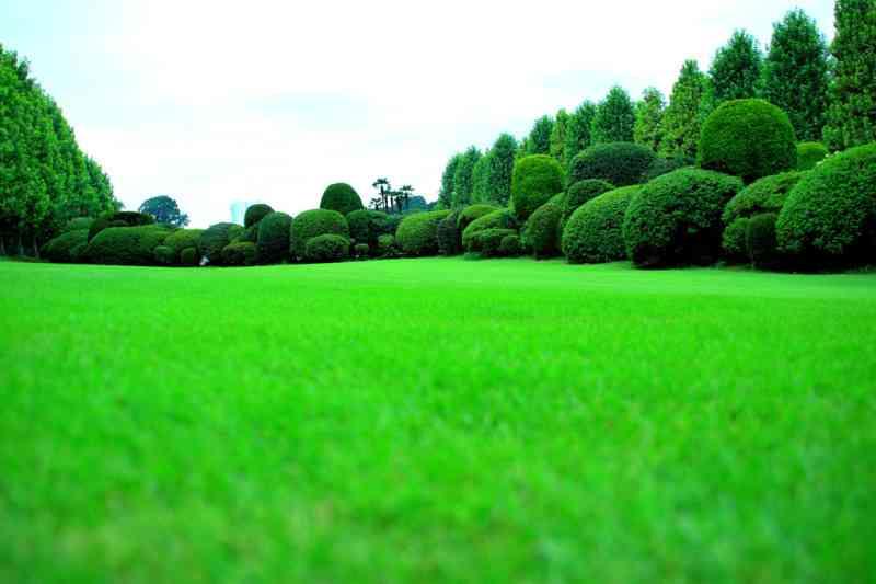 「隣の芝は青い」!幸せそうに見えて、実情はこうだよ…を告白していくトピ。