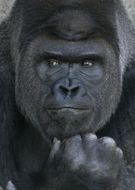 [転載禁止] 【裸】ノンケのバカ騒ぎ写真57【露出】 [転載禁止]©bbspink.comYouTube動画>6本 ->画像>674枚