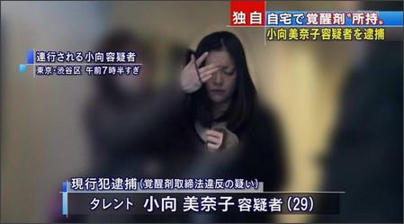 【速報】小向美奈子が覚醒剤所持の疑いで再逮捕!