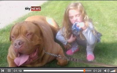飼い始めて間もない大型犬が4歳女児を噛み殺す。(英) | Techinsight|海外セレブ、国内エンタメのオンリーワンをお届けするニュースサイト