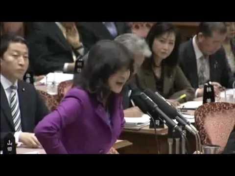 片山さつき議員が民主党による在日生活保護費激増計画を追及! - YouTube