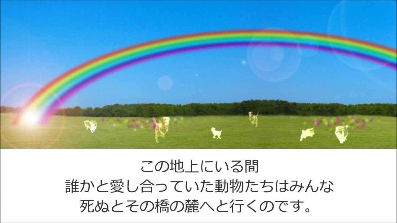 虹の橋 第一部『虹の橋』 - YouTube