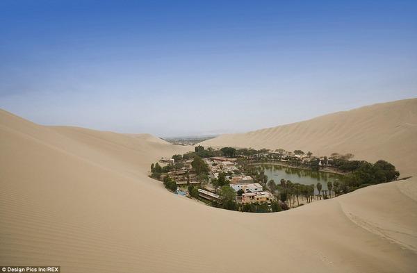 ペルーで最も乾燥した地域にある「砂漠のオアシス」があまりにも異次元過ぎると話題に|面白ニュース 秒刊SUNDAY