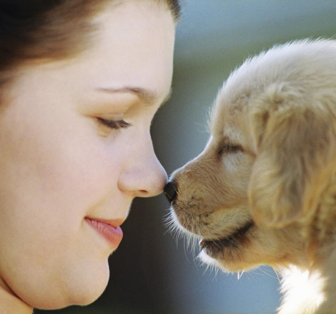 もし飼っているペットと話すことができたら