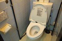 意外に知らない家庭の衛生学11選 「トイレのフタをせずに水を流すと尿便の菌が2メートル近く飛ぶ」 : 足で踏む?手で押す?トイレのレバー問題 - NAVER まとめ