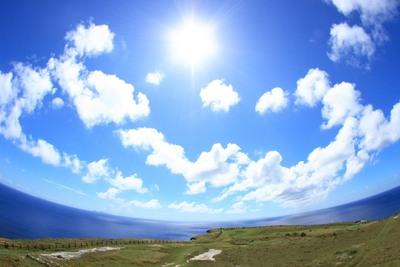 花粉症の人は「沖縄で働いていいよ!」 ITベンチャー企業が「リモートライフ制度」導入
