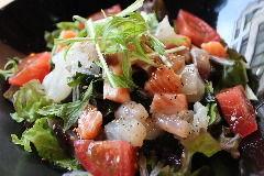 【画像】サラダ好きな人