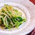 豆苗ともやしのナムル☆ by @LECHE [クックパッド] 簡単おいしいみんなのレシピが197万品