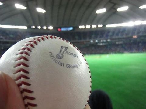 【速報】野球場でおばさんが子供からボールを奪い取る←批判殺到wwwww(画像あり) : GOSSIP速報