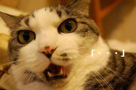 """仮釈放中の押尾学が未成年キャバ嬢をお持ち帰り…""""プレイボーイ""""は健在か"""