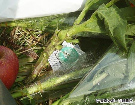 【川崎中1殺害事件】献花にコンドームの非道