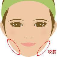 顔の『えら』・・・骨ではなく、筋肉のコリをほぐして改善を♪ - NAVER まとめ