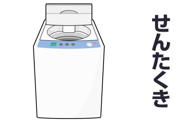 洗濯機は縦型?ドラム式?