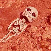 【NASA】火星に生命体(宇宙人?)を発見していた【画像有】 - NAVER まとめ