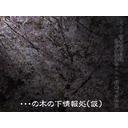 【鑑定】・・・の木の下情報処【情報戦】 - 2015/03/21 00:23開始 - ニコニコ生放送