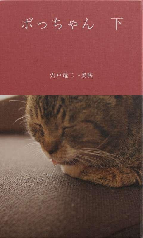 BCCKS / ブックス - 宍戸竜二・美咲著『ボっちゃん 下』