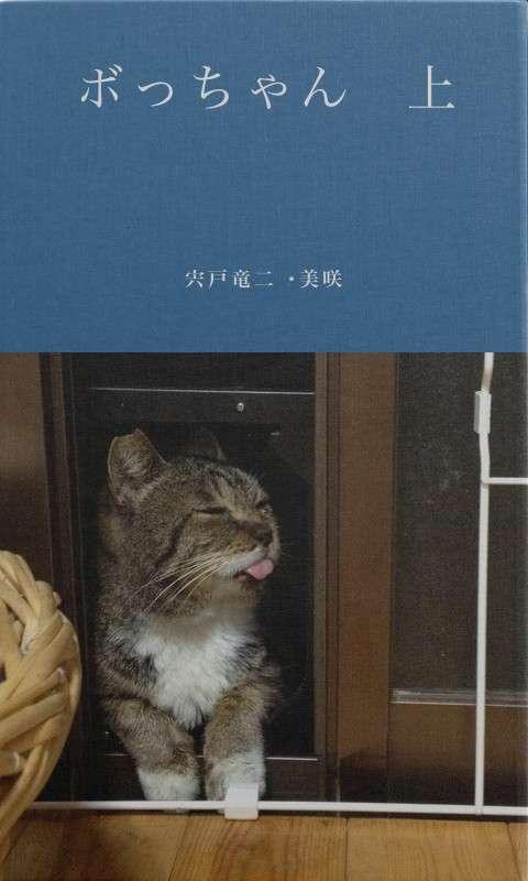 BCCKS / ブックス - 宍戸竜二・美咲著『ボっちゃん 上』