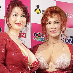 叶恭子が全裸に!ブログで大胆公開