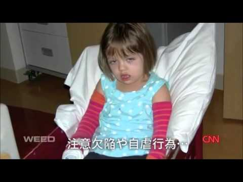 WEED - 日本語字幕付き (1/6)・改訂 - YouTube