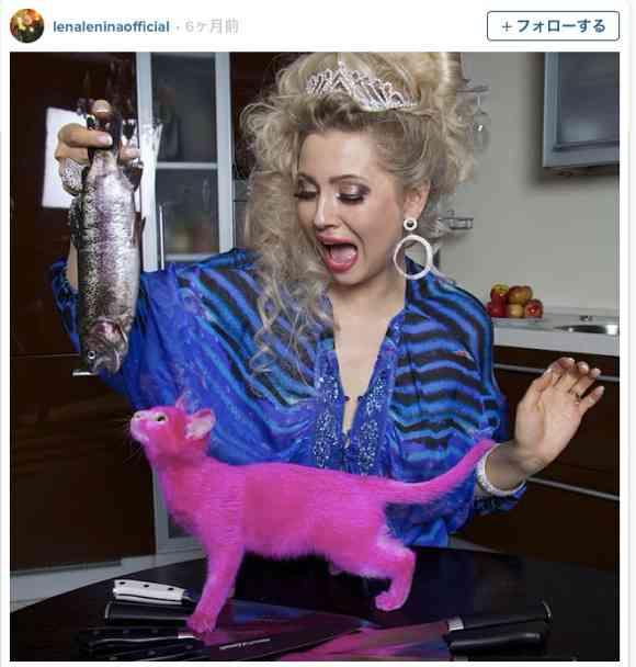 【真相は不明】女性がネコをピンクに染める→有害染料による『ネコ毒死説』で炎上 →女性は死亡説を否定