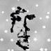 """藤 on Twitter: """"アナリスト青木の『#殉愛の真実鑑定というお仕事』#nicoch784#大人の社会科チャンネルhttp://t.co/z5Pm4E0weG5日23:30〜今のうちにタイムシフト予約をしておくと、プレミアム会員でなくても一週間好きな時に見られます。#アリゾウ"""""""