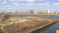 川崎市中1生殺害 逮捕の17歳少年、主犯格がいることを伝えず(フジテレビ系(FNN)) - Yahoo!ニュース