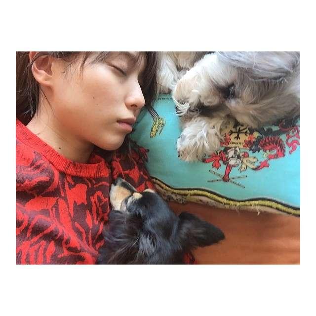 """戸田恵梨香が""""お昼寝""""写真をInstagramで公開し話題「可愛すぎ」「どんだけ美人」"""