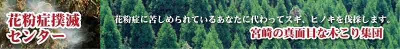 伐採と森林の再生力【花粉症撲滅センター】