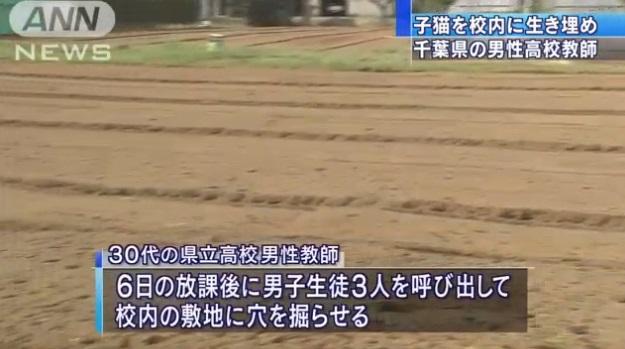 高校教諭、子猫4匹を生き埋め…生徒に穴掘らせ