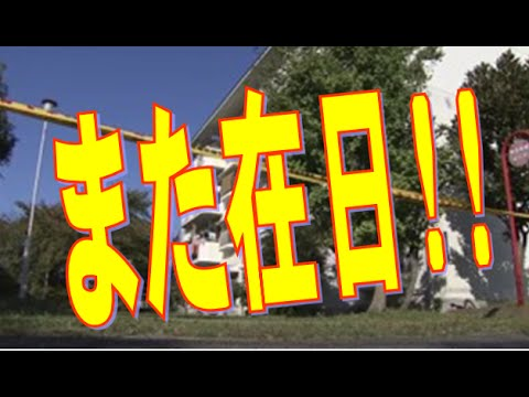 女性店員、刃物持つ犯人と2分間にらみ合い 神戸でコンビニ強盗、42歳無職男を逮捕