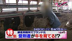 網走刑務所の受刑者たちが飼育した「網走監獄和牛」発売スタート!畜産の素人なのにA5ランクを獲る牛が出るほどレベルが高いらしい…!!