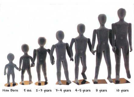 今の身長と理想の身長
